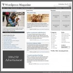 magazine-theme-wp