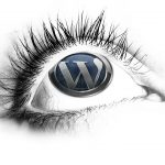 WordPress es el CMS del presente y del futuro